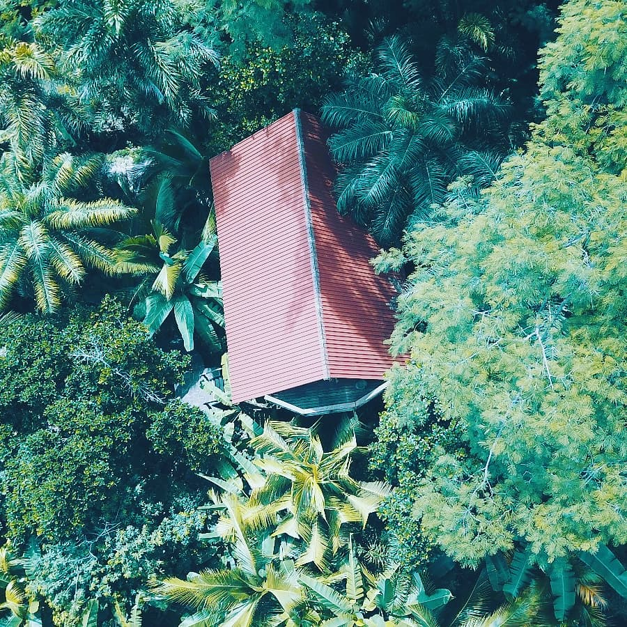 Bird's eye view of Jungle House